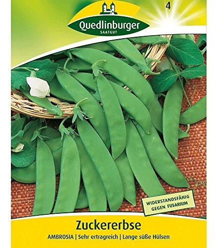 Zuckererbse 'Ambrosia', 1 Tüte Samen