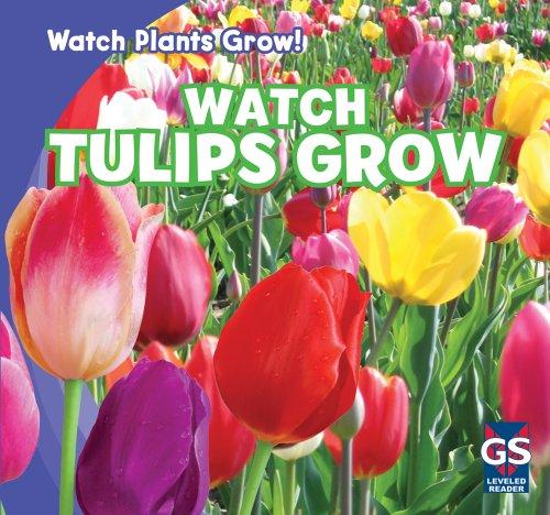 watch-tulips-grow