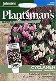 Johnsons Samen, Bildhaftes Paket Blume Cyclamen Hardy gemischt Herbst-Alpenveilchen 12 Samen