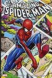 The Amazing Spider-Man Omnibus 3