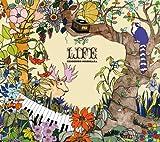 Songtexte von Kenichiro Nishihara - Life