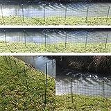 Teichzaun Komplett Set - Ober oder Unterbogen wählbar - Metall Gartenzaun grün Teich Zaun Set Gitterzaun Zaunmatten 5 Elemente