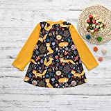 Baby Girls Dress, ❤️ Xinantime Toddler Kids Print Cartoon Fox Sun Dress Clothes Outfits for 0-5Years Old (2-3 Y, Yellow)