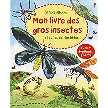 Mon livre des gros insectes