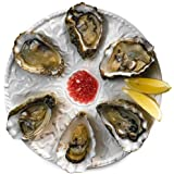 Oyster Plate 6 Hole 25.5cm | Oyster Dish, Oyster Server, Porcelain Oyster Plate