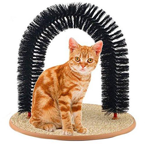 katzeninfo24.de FOCUSPET Katze Haarbürste Bürste Kamm Massage Katzenspielzeug Pflege Massage Katzenminze Katze Scratcher Borsten