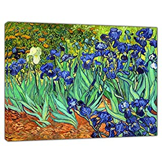 Van Gogh Irises Oil Paint Reprint ON Framed Canvas Picture Wall Art Decoration 30'' x 24'' inch-18mm Depth