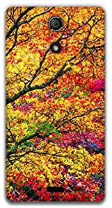 The Racoon Grip Autumn hard plastic printed back case / cover for Sony Xperia ZR