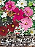 Sperli-Samen Schmuckkörbchen (Cosmea) Sensation, Mischung