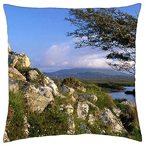 Wind Swept Arbre en Irlande Galway–Rainy Man Taie d'oreiller Coque (45,7x 45,7cm)