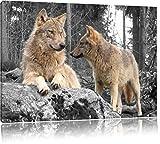 Wölfe im Wald B&W Detail, Format: 120x80 auf Leinwand, XXL riesige Bilder fertig gerahmt mit...