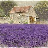 "Van Eyck Canvas Wall Art Work Oil Painting Violet Lavender 16"" x 16"" Inches yapurple4"