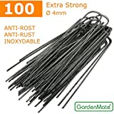 GardenMate® 100 Grapas Metálicas GALVANIZADOS alambre de acero 200 mm de largo 3,8 mm de espesor