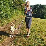 Joggingleine für Hunde von Nikkipet Verstellbarer, wasserabweisender Laufgürtel mit 2 Fächern & elastische, reflektierende 120 cm Leine & – Premium Flexi Jogging Hundeleine + Gürteltasche für große & mittlere Hunde - 5