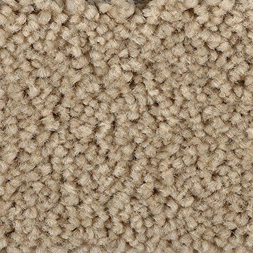 BODENMEISTER BM72182 Teppichboden Auslegware Meterware Hochflor Shaggy Langflor Velour beige 400 cm und 500 cm breit, verschiedene Längen, Variante: 2 x 4 m