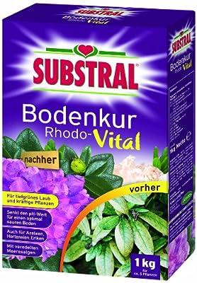 Substral Bodenkur Rhodo-Vital - 1 kg von Substral - Du und dein Garten