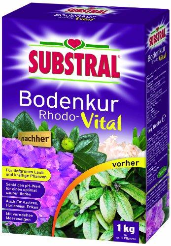 substral-bodenkur-rhodo-vital-1-kg