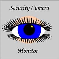 Security Camera Monitor