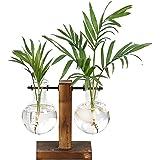 Magiin 1pc Vase de Plantation Suspendu d'eau en Verre, Support en Métal Rétro en Bois Massif, pour Fleur Plantes Hydroponique