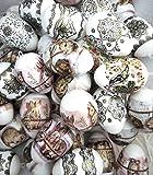 ukrainisches-kunsthandwerk 24 Ostereier Gold Hasen, Bordüre Gold Schwarz und Kaleidoskop. mit Folie bezogen. Kunststoff. WETTERFEST.