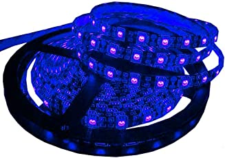 Citra Led Strip 5050 Cove Light Rope Light Ceiling Light Electric Blue 5 metre Driver Included