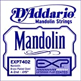 D\'Addario EXP7402 EXP7402 EXP Mandolin Single String