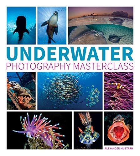 underwater-photography-masterclass