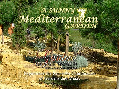A Sunny Mediterranean Garden (Global Home)