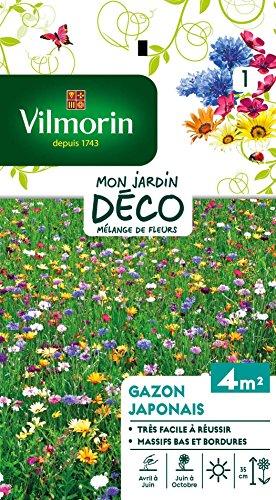 Vilmorin 5861141 Gazon, Multicolore, 90 x 2 x 160 cm