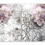 murando - Fototapete 350x256 cm - Vlies Tapete - Moderne Wanddeko - Design Tapete - Wandtapete - Wand Dekoration - Blumen Orchidee Risse b-A-0193-a-a