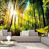 murando - Fototapete Waldlandschaft 350x256 cm - Vlies Tapete - Moderne Wanddeko - Design Tapete - Wandtapete - Wand Dekoration - Wald Landschaft grün b-B-0248-a-a