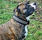 Hundehalsband Galax Halsband Hund BREIT M L XL Tysons Leder Lederhalsband (L, Schwarz Go Rose)