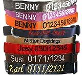 Hunde Halsband mit Namen und Telefonnummer bestickt (Breite 20 mm, Länge 40 - 55 cm), verschiedene Farben