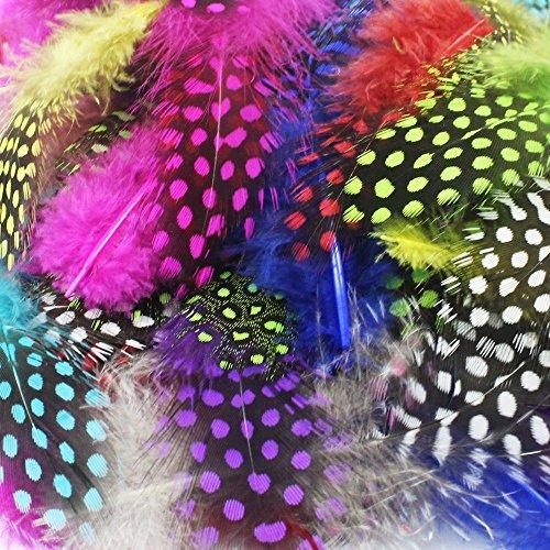 Indianer Federn Kostüm (SUNMI 120er Bunte Gesprenkelten Indianer Federn, 8-15cm / 3-6'', 10 Farben, Sicher und Ungiftig und Nicht verblassen.)