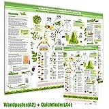 [2er Set] Grüne Smoothies Poster(DINA2) & Grüne Smoothies in 5 Minuten Schnellübersicht(DINA4)Die leckere Mini-Mahlzeit richtig zubereiten und bewusst genießen (2018)