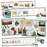 Wildgoose Education wg7744Vikings juego de línea interactiva