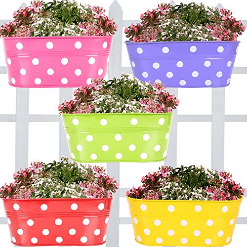 Trustbasket Set Of 5 -Dotted Oval Railing Planter - (Magenta, Purple, Green, Red, Yellow)
