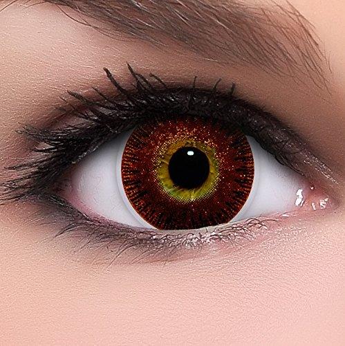 Linsenfinder Lenzera Circle Lenses goldene 'Golden Brown' ohne Stärke + Kombilösung + Behälter 14,50mm farbige Kontaktlinsen