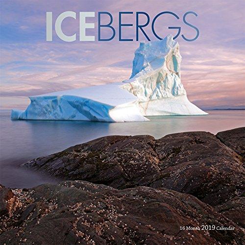 Icebergs - Eisberge 2019 - 16-Monatskalender (Wall-Kalender)
