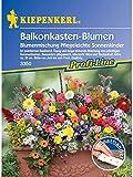 Blumenmischung Balkonkastenblumen pflegeleichte Sonnenkinder Mischung Saatband