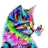 DIY Digital Leinwand-Ölgemälde Geschenk für Erwachsene Kinder Malen Nach Zahlen Kits Home Haus Dekor - Katze und Schmetterling 40*50 cm hergestellt von NCFDBL