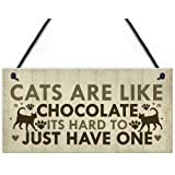 Sfuzwg Cats Are Like Chocolate Its Hard To Just Have One Wood Hanging Plaque Funny Novelty Wooden Sign Gift For Cat Lovers