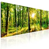 murando - Bilder Wald 200x80 cm - Leinwandbilder - Fertig Aufgespannt - 5 Teilig - Wandbilder XXL - Kunstdrucke - Wandbild - Waldlandschaft Natur Wald Panorama Baum c-B-0184-b-m