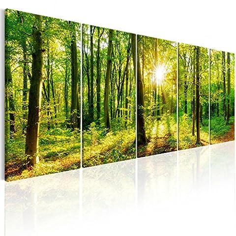 murando - Bilder Wald 225x90 cm - Leinwandbilder - Fertig