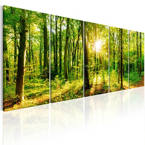 murando - Bilder Wald 200x80 cm Vlies Leinwandbild 5 TLG Kunstdruck modern Wandbilder XXL Wanddekoration Design Wand Bild - Waldlandschaft Natur Panorama Baum c-B-0184-b-m