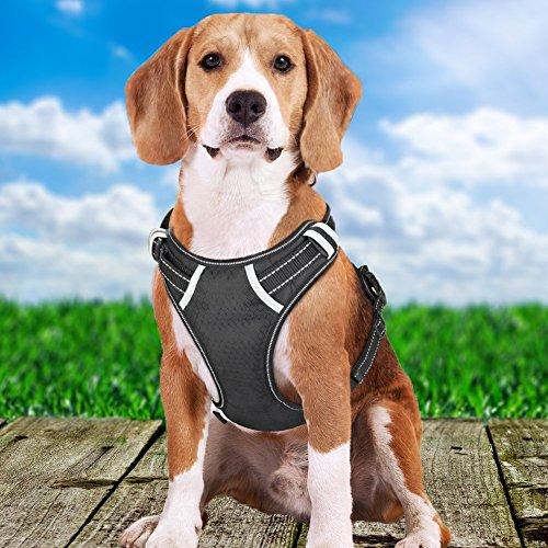 bokagoo Big Hundegeschirr, keine Pull vorne Reihe Pet Hundegeschirr, verstellbares Hundegeschirr Outdoor Weste 3M Reflektierende Oxford Weste Soft Vest, Walking Training Einfache Kontrolle für mittlere Große Hunde