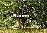 Bäume (Wandkalender 2018 DIN A3 quer): Bäume im Verlauf der Jahreszeiten (Monatskalender, 14 Seiten ) (CALVENDO Natur) [Kalender] [Apr 01, 2017] Schaefer, Kristine