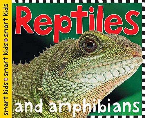 reptiles-and-amphibians-smart-kids