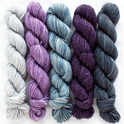 Manos del Uruguay Silk Blend Fino Minis Set Fb. Beatrix, 100g (5x20g) Merino Extrafine + Seide, handgefärbt mit wunderschönem Farbverlauf, Wolle mit Seide zum Stricken -