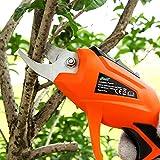 HomeYoo électriques d'élagage électrique de coupeur d'élagueur de l'arbre, 3.6V Sécateur de Jardin sans Fil électrique pour élagage, bonsaï,Jardin,des Arbres, des Fleurs (Orange)